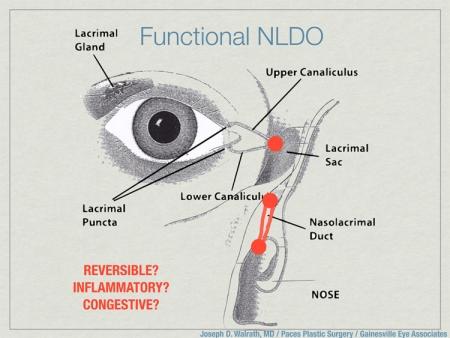 fnldo-diagram-jpg-nggid03121-ngg0dyn-450x0x100-00f0w010c010r110f110r010t010